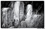 Pithy Epitaphs Tombstones