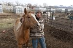 Rescued Horses In Utah Need Your Help
