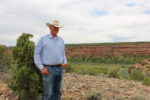 Canyon Meadows Ranch – Grass-Fed Cattle