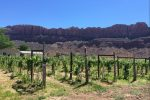 Spanish Valley Vineyards of Moab