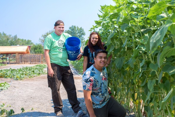 Savanna & Ben with farm manager Spencer students, pull weeds in the pumkin patch-27