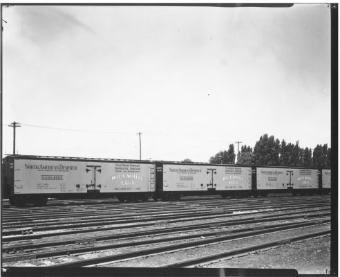rail-cars-three-in-yard