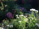 Summer Concert Season, Red Butte Plant Sale, Moab Arts Festival and Utah Theater