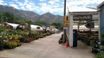 Valley Nursery Has Been Beautifying Ogden Since 1948