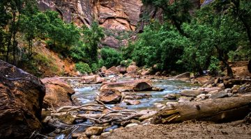 How Utah's Wild Places Provide a Unique and  Effective Adventure-Therapy for Troubled Youth