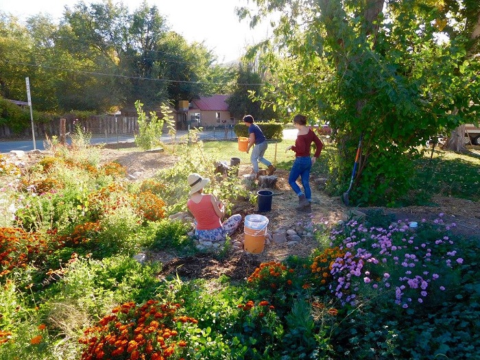 CommuniTea Garden: Moab Man Embraces the Grace of Open Space