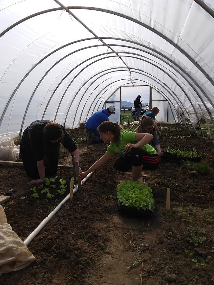 Putting the Aggie in Agriculture: Student-run Garden Provides Fresh Produce and Experience
