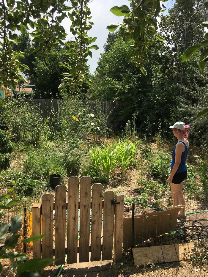 Three Nontraditional Home Gardens in Salt Lake City