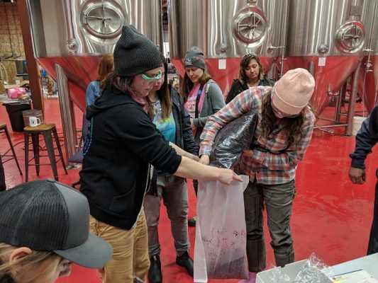 Pink Boots Society adding hibiscus to beer