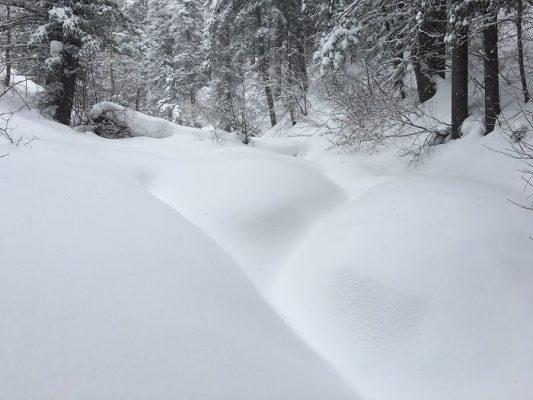 Record snow fall Wasatch mountains