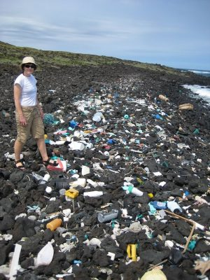 Single-use items in particular, mostly water bottles, comprise the bulk of the literal mountains of improperly discarded plastic that clogs rivers and streams on its way to the ocean.