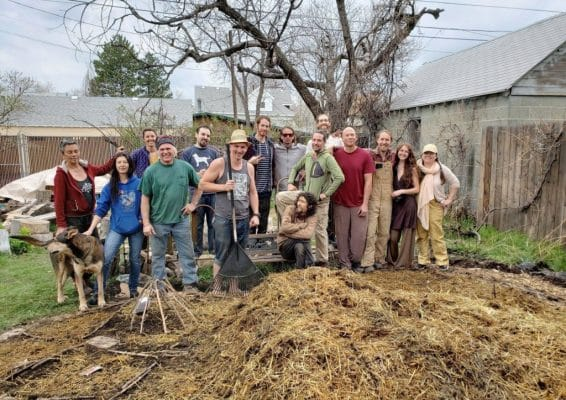 Krishna Food Forest & Farm permaculture guilds