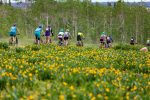 Women cyclists find help, challenging events, and a new tribe with Wildflower Outdoor