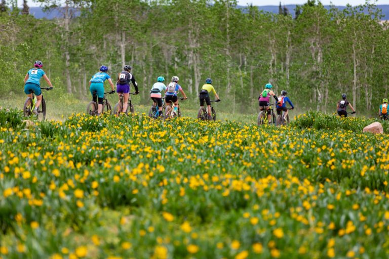 If you're looking for opportunities to learn, improve, and challenge yourselves, Wildflower Outdoors has cycling opportunities for women of all ages and abilities.
